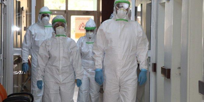 Bingöl'de filyasyon ekibiyle salgın kontrol altına alındı