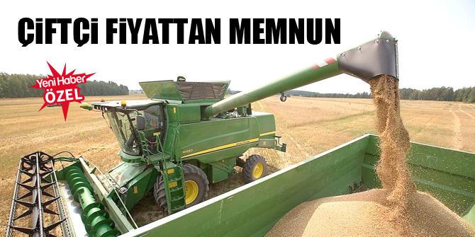 Çiftçi fiyattan memnun