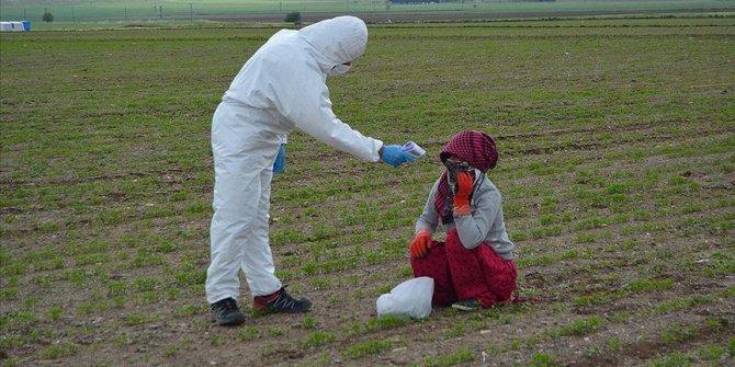 Sağlık Bakanlığından mevsimlik tarım işçilerine yönelik Kovid-19 tedbirleri