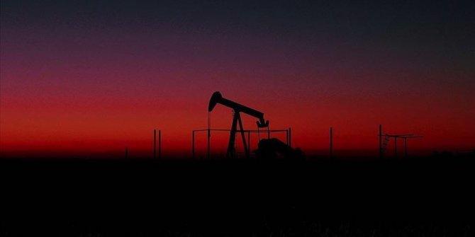 Brent petrolün varili 30,01 dolardan işlem görüyor
