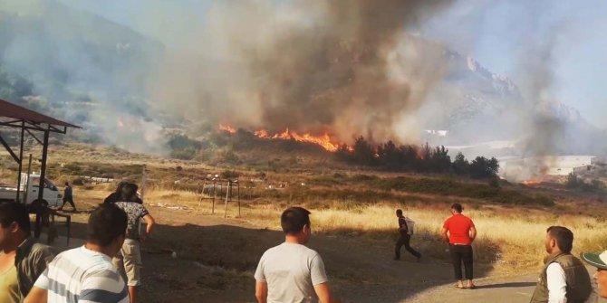 Orman yangında 80 dönüm muz serası zarar gördü