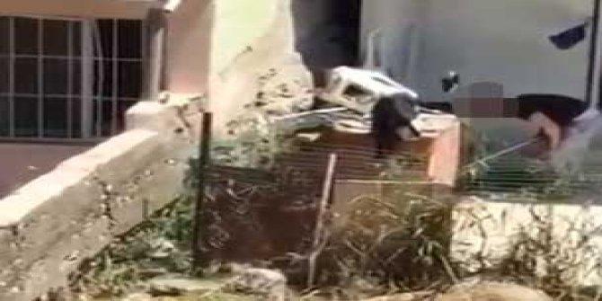 Köpeğine şiddet uygulayan kişiye tepki yağdı
