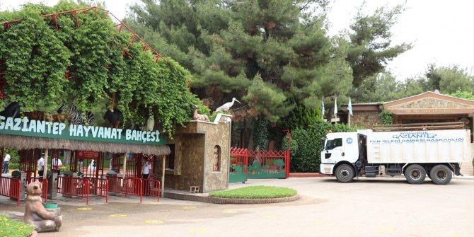 Gaziantep Hayvanat Bahçesine 200 yeni üye