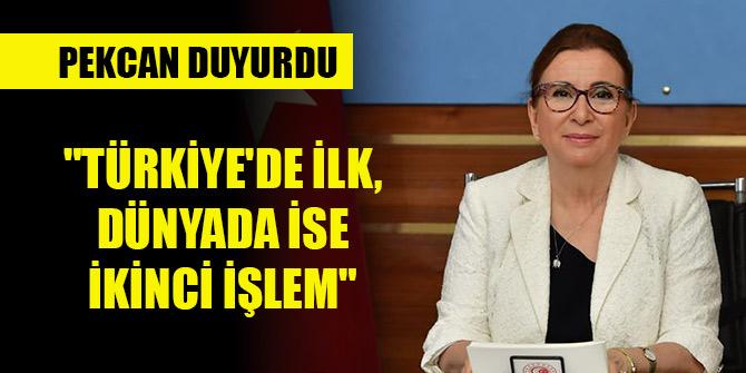 """Pekcan duyurdu: """"Türkiye'de ilk, dünyada ise ikinci işlem"""""""