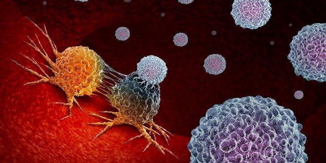 Koronavirüs bağışıklığı sadece birkaç ay sürebilir