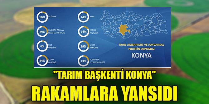 """""""Tarım başkenti Konya"""" rakamlara yansıdı"""
