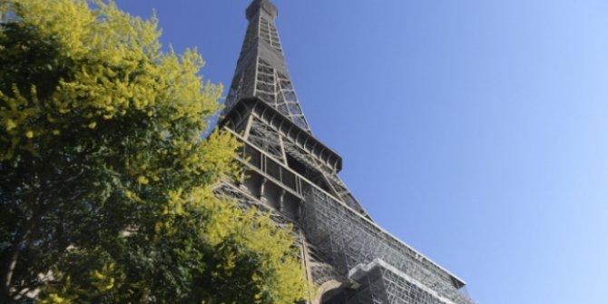 Fransa'da vaka sayısı 208 bin 912'ye yükseldi