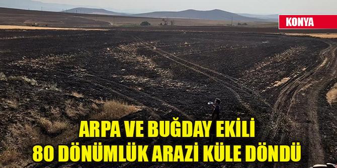 Konya'daki yangında 80 dönümlük arazi küle döndü
