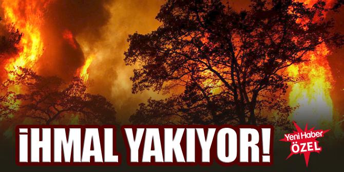 Orman yangınları insan kaynaklı