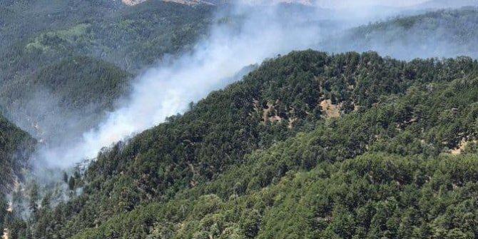 Kızıldağ'da orman yangını