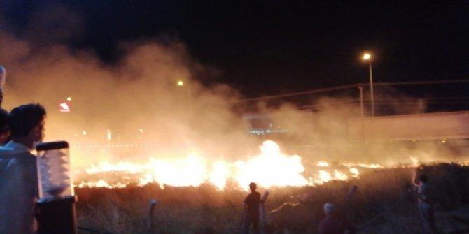 Balıkesir'de ot yangını geceyi aydınlattı