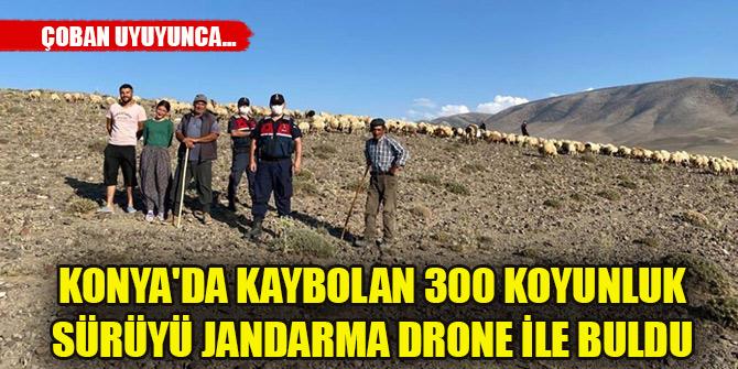 Konya'da kaybolan 300 koyunluk sürüyü jandarma drone ile buldu