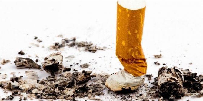 """Türk bilim insanları, nikotinin bağışıklık sistemini """"saldırganlaştırdığını"""" kanıtladı"""