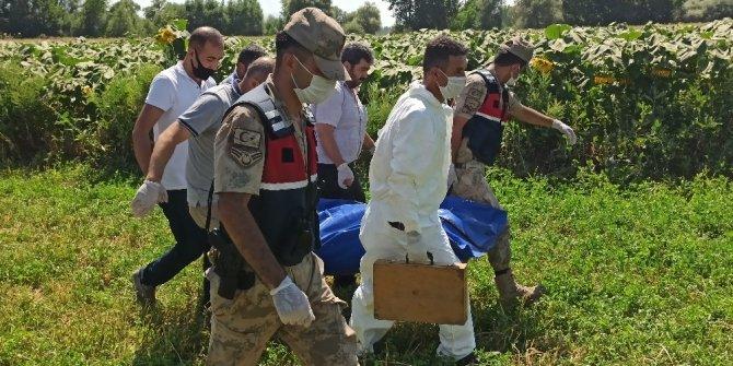 Ayçiçeği tarlasında cansız bedeni bulunan engelli tabanca ile vurulmuş