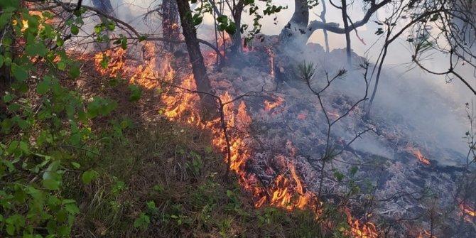 Örtü yangınında 3 hektarlık alan zarar gördü