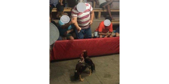 Mersin'de horoz dövüşü yaptıranlar suçüstü yakalandı
