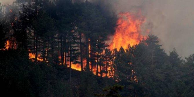 Konya'da çıkan orman yangınından ilk görüntüler
