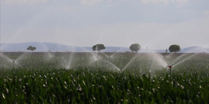 TEDAŞ, tarımsal sulama borçlarını yeniden yapılandırıyor