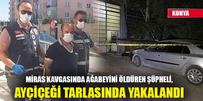 Konya'da miras kavgasında ağabeyini öldüren şüpheli, ayçiçeği tarlasında yakalandı