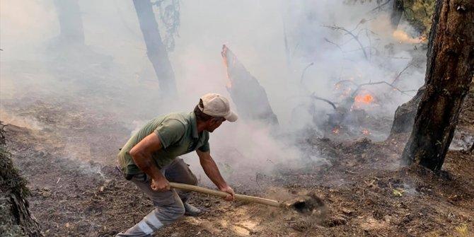 Konya'daki ormanlık alanda çıkan yangın korkuttu