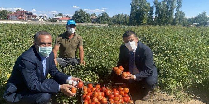 Milletvekili Arvas çiftçileri tarlada ziyaret etti