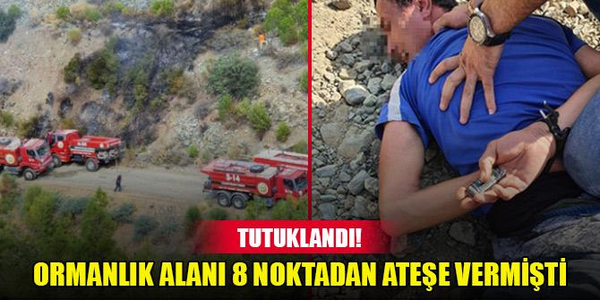 Hatay'da ormanlık alanı 8 noktadan ateşe veren şüpheli tutuklandı