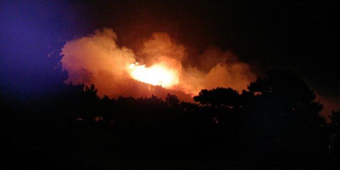 İzmir'de çıkan orman yangını Balıkesir'e sıçradı