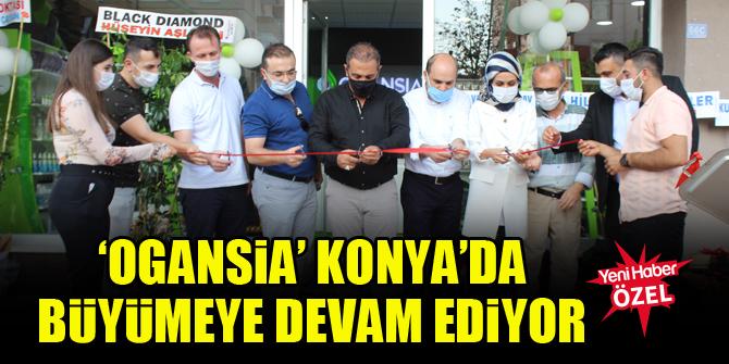 'Ogansia' Konya'da büyümeye devam ediyor