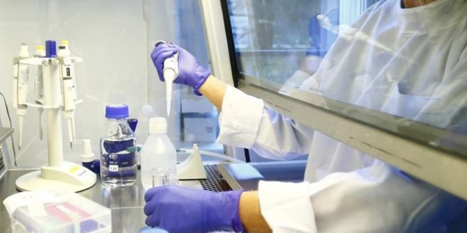 DSÖ: Orta ve düşük gelirli ülkeler için 1 milyar doz Kovid-19 aşısını güvenceye aldık
