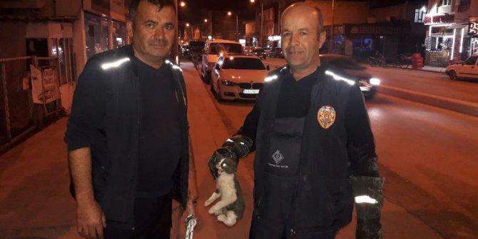 Karapınar'da aracın motor bölümüne sıkışan kediyi itfaiye kurtardı