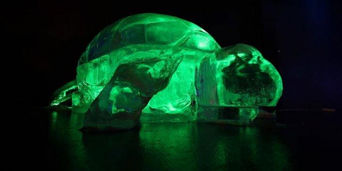 """Turski """"ledeni muzej"""" posjetiocima omogućava polarne šetnje"""