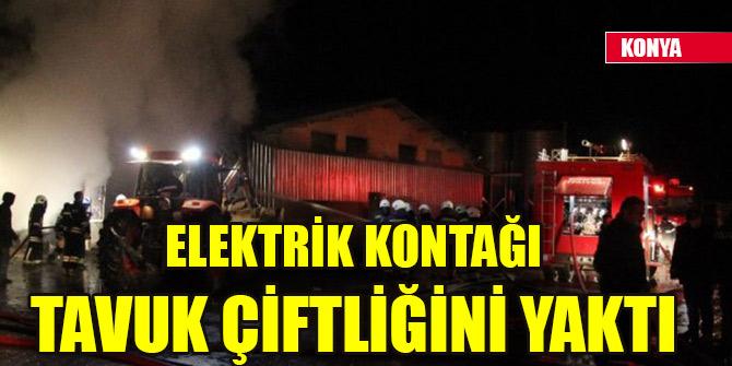 Elektrik kontağı tavuk çiftliğini yaktı