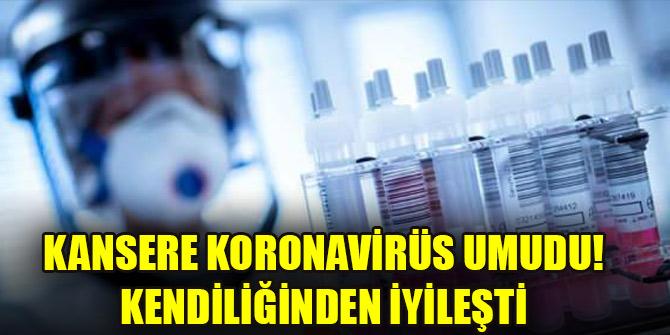 Kansere koronavirüs umudu! Kendiliğinden iyileşti