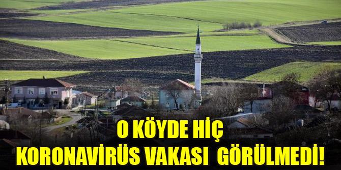 Koronavirüs vakası görülmeyen köy!