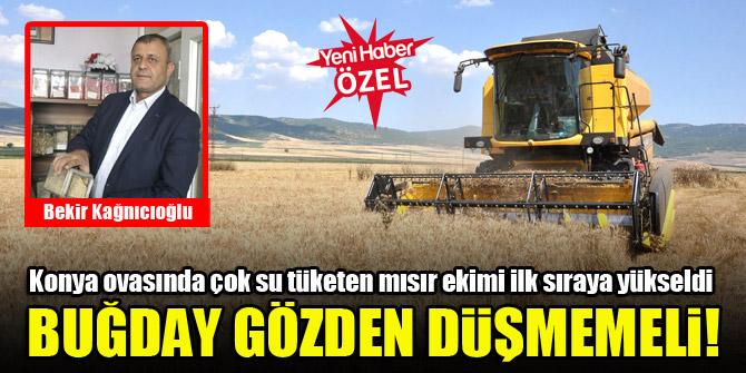 Yeniden buğdaya yönelmek gerek!