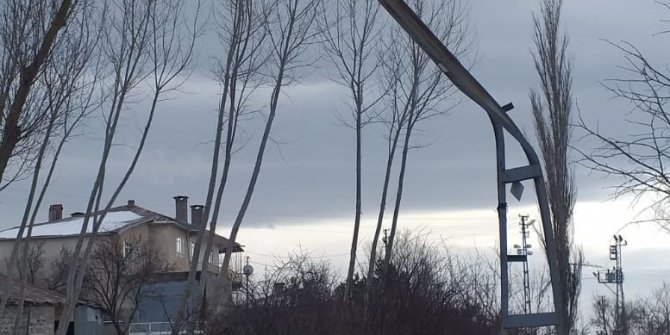 Tokat'ta şiddetli rüzgar; ağaçlar devrildi