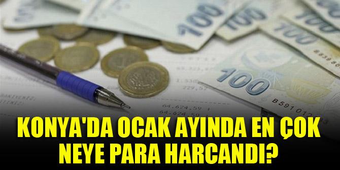 Konya'da Ocak ayında en çok neye para harcandı?
