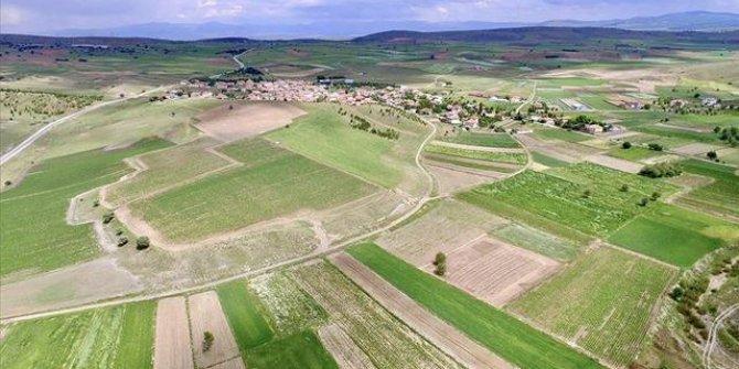 DSİ, Niğde'de arazi toplulaştırması yapacak