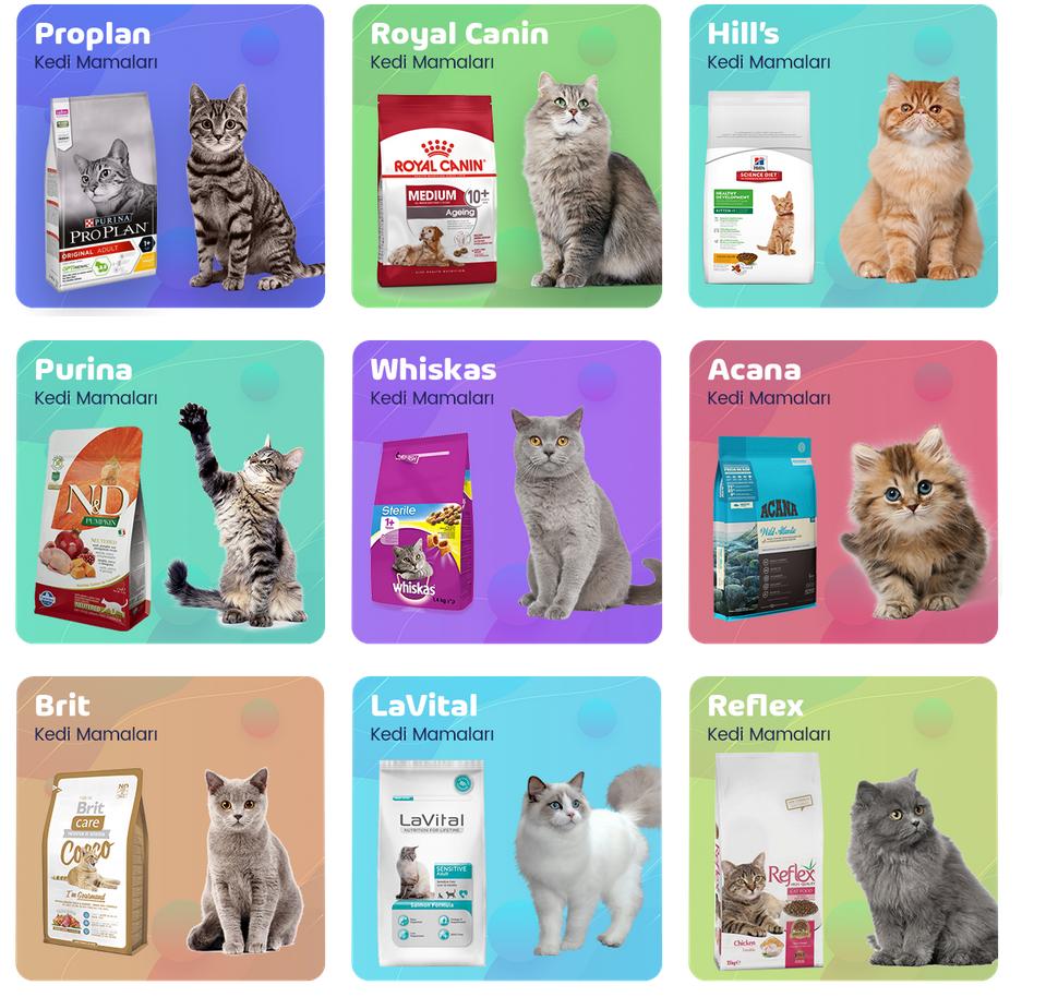 Konserve kedi mamaları ve mamaları hakkında bilgiler