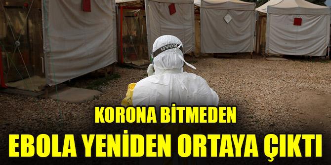 Korona bitmeden ebola yeniden ortaya çıktı