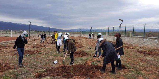 Bingöl'de bin 200 adet fidan toprakla buluşturuldu
