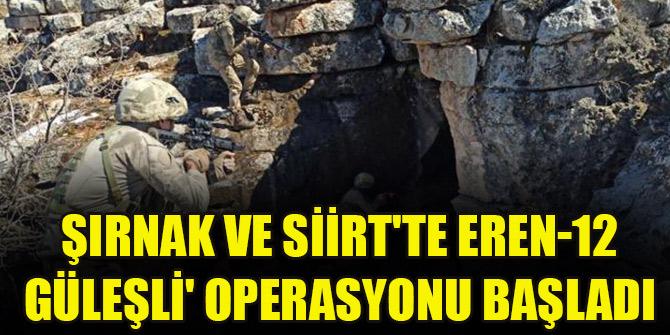 Şırnak ve Siirt'te Eren-12 Güleşli' operasyonu başladı