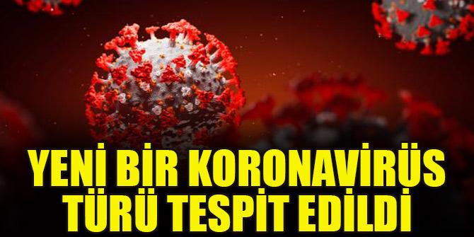 Yeni bir koronavirüs türü tespit edildi