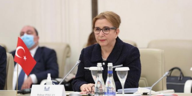 Pekcan: Azerbaycan'la 15 milyar dolarlık ticaret hacmi hedefine yaklaştık