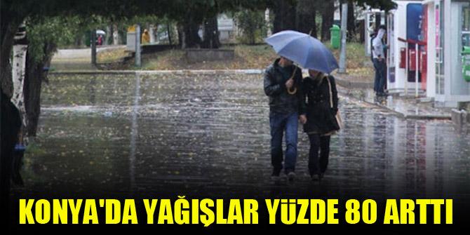 Konya'da yağışlar yüzde 80 arttı