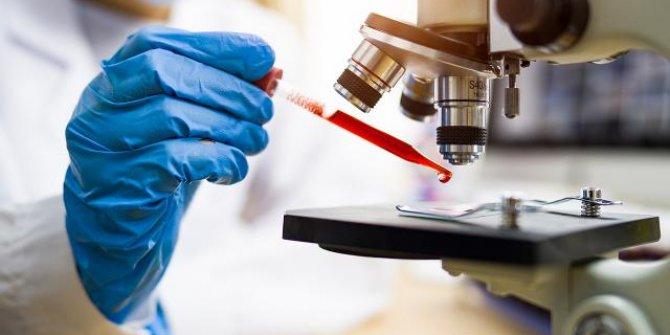 Bilim insanları havadan DNA topladı