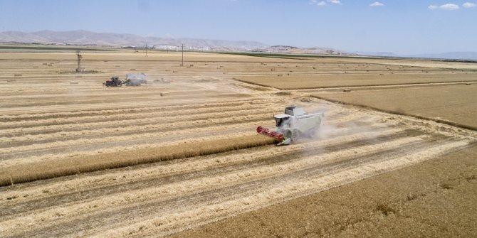 Selçuk Üniversitesi'nden 'Alo Ziraat Çiftçi Danışma Hattı'