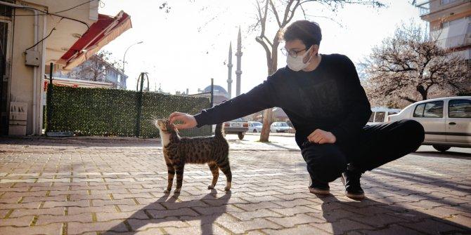 """Hayvansever lise öğrencisi harçlıklarıyla sokaklardaki """"can dostları""""nı besliyor"""