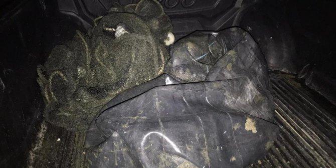 Van'da, 2 buçuk ton kaçak inci kefali avlayan 8 kişiye 15 bin TL ceza