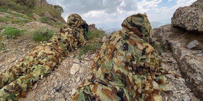 Turkey neutralized 113 terrorists in recent N.Iraq operations